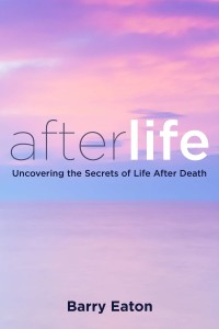 AFTERLIFE US Cover Art